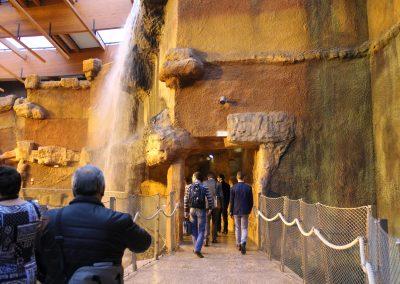Africarium excursion